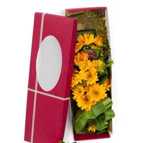 꽃상자 c366